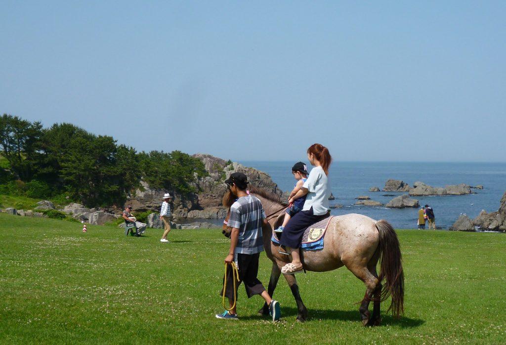Guided Horseback Riding on the Tanesashi Coast