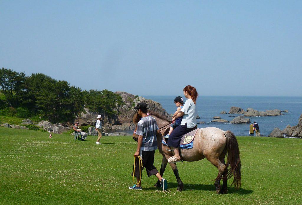三陸復興國立公園   騎馬體驗