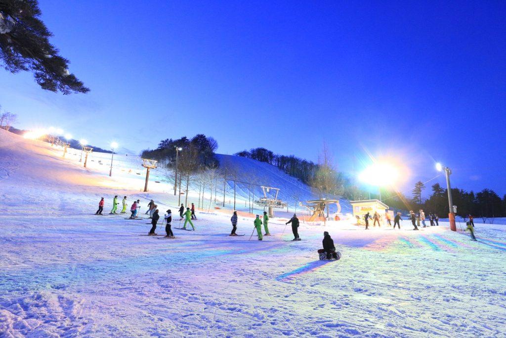 創遊村229スキーランド2019-20シーズン券予約受付中!